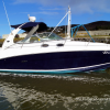 Thumbnail image for Sea Ray 335 Sundancer – £74,995